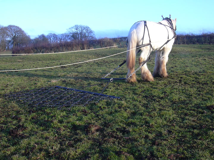 Chain harrows for horses UK sales free mainland delivery